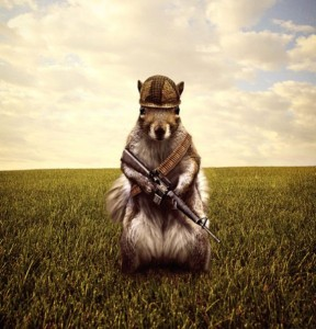 A- Humor armed squirel